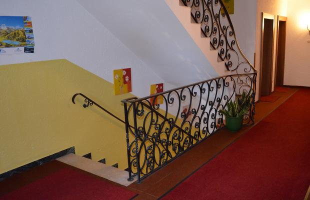 фотографии отеля Pension Austria изображение №11
