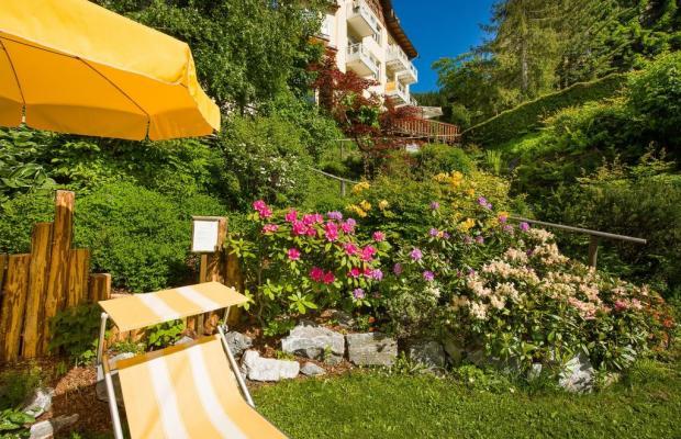 фото отеля Hotel Alpenblick изображение №9