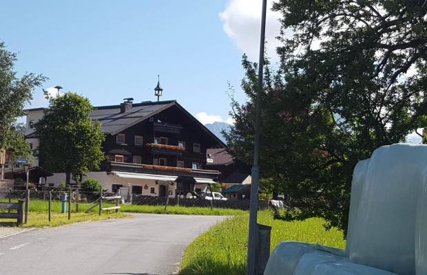 фотографии отеля Gasthof Hammerschmied изображение №19