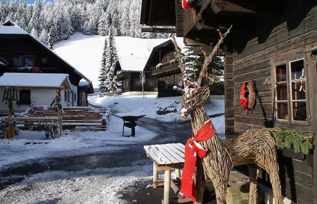фотографии отеля Feriendorf Kirchleitn Dorf Kleinwild изображение №39