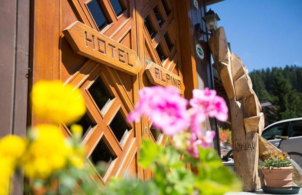 фотографии отеля Hotel Alpina изображение №43