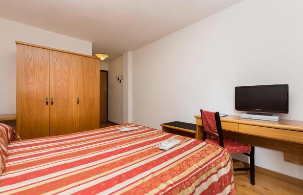 фотографии Hotel Alpina изображение №16