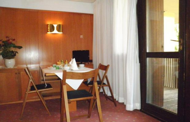фотографии R.T.A. Hotel des Alpes 2 изображение №16