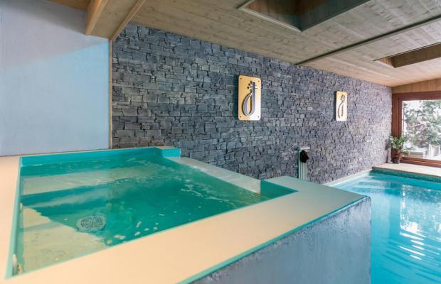 фотографии отеля Alp Hotel изображение №3