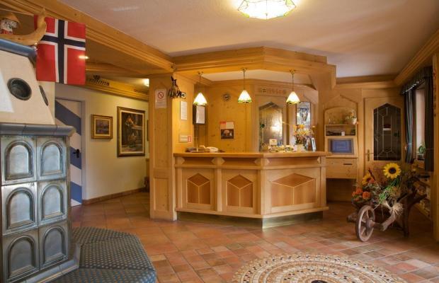 фотографии Albergo Bellaria изображение №20