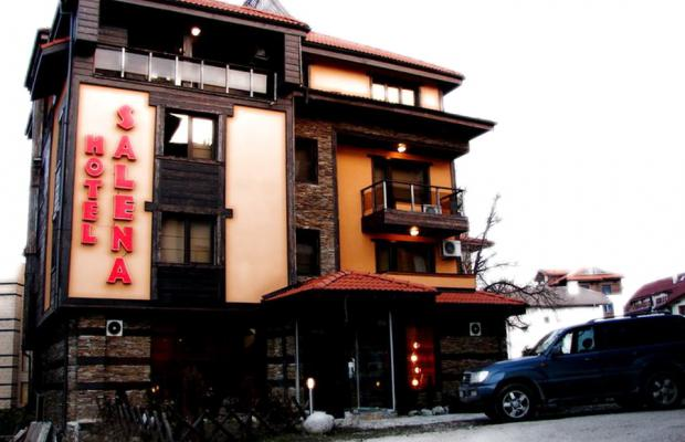 фото отеля Салена (Salena) изображение №1