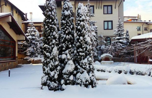 фото отеля Evelina Palace (Евелина Палас) изображение №25