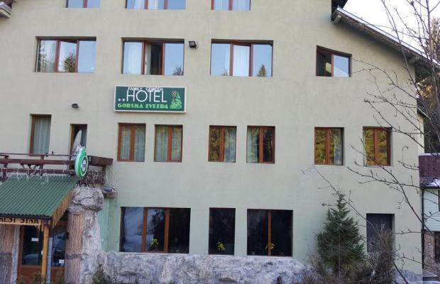 фотографии Forest Star (ex. Gorska Zvezda) изображение №16