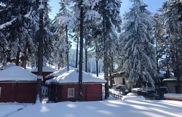 фотографии отеля Альпин (Alpin) изображение №3