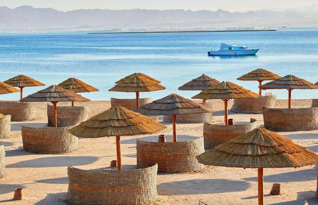 фото Sheraton Soma Bay Resort изображение №22