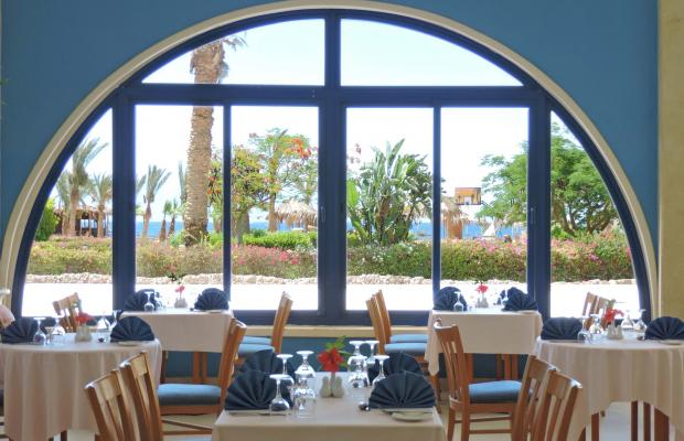 фото отеля Coral Resort Nuweiba (ех. Hilton Nuweiba Coral Resort) изображение №29