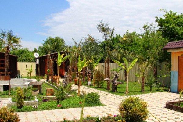 фото Оазис (Oasis) изображение №2