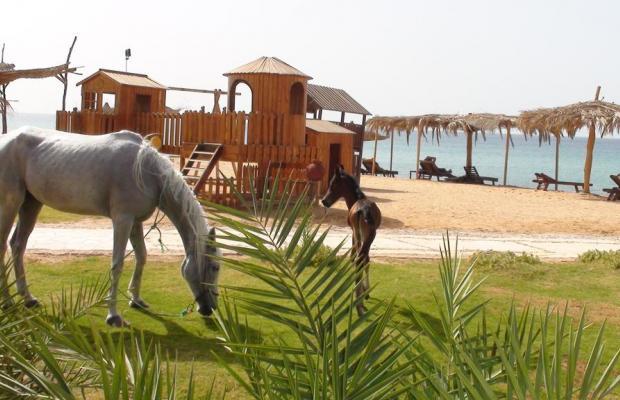 фотографии Saydeen Village Red Sea Riviera изображение №4