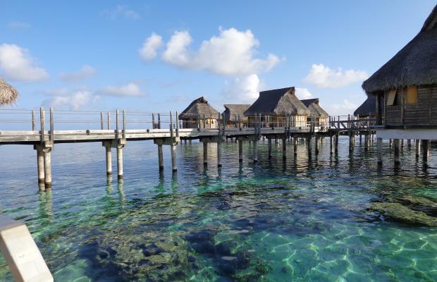 фотографии Malapascua Exotic Island Dive & Beach Resort изображение №8