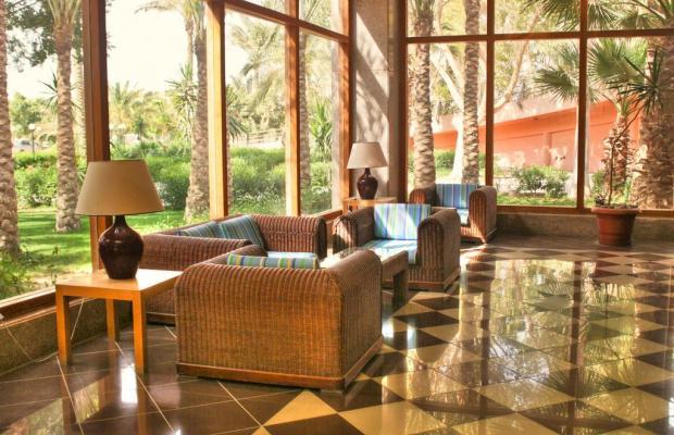 фотографии Palmera Beach Resort изображение №20