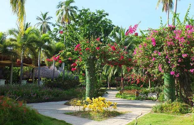 фото отеля Dos Palmas Arreceffi Island Resort изображение №17