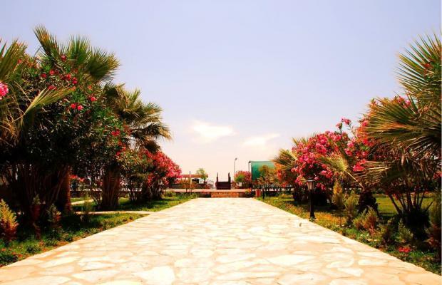 фотографии отеля Angora Beach Resort изображение №23