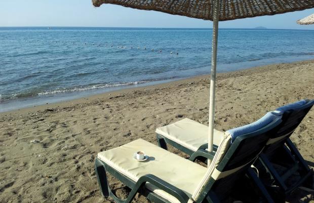 фотографии отеля Angora Beach Resort изображение №11