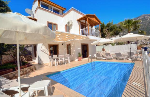 фото отеля Olive Villas изображение №1
