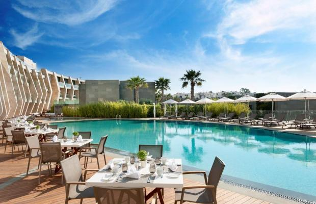 фотографии отеля Swissotel Resort Bodrum Beach изображение №27