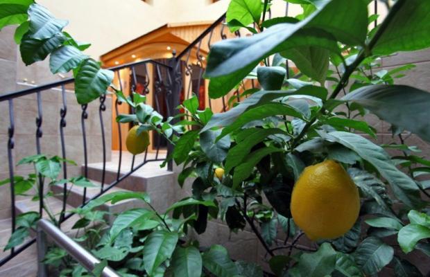 фото отеля Fоnix Medical Wellness Resort (ex. Fonix Castle) изображение №17