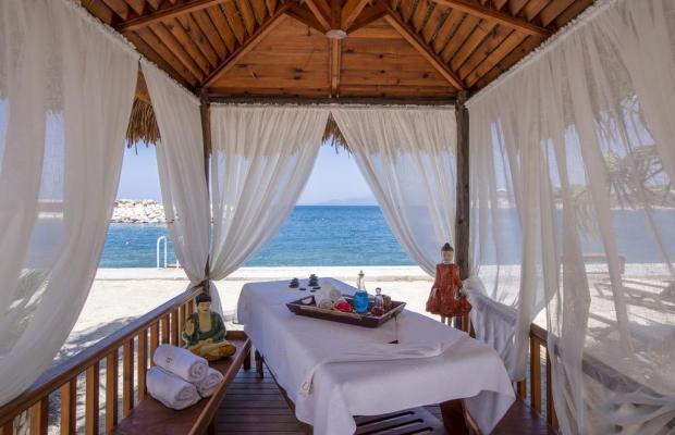 фотографии Pine Bay Holiday Resort изображение №12