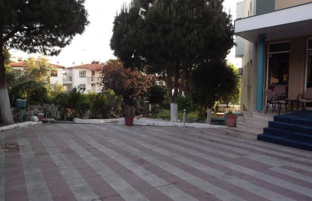 фотографии Albora изображение №24