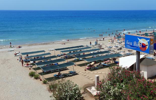 фотографии отеля Sea Bird Beach Hotel изображение №7