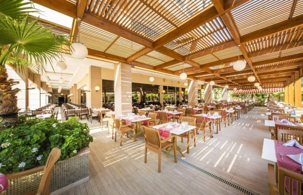 фотографии отеля Dizalya Palm Garden изображение №3