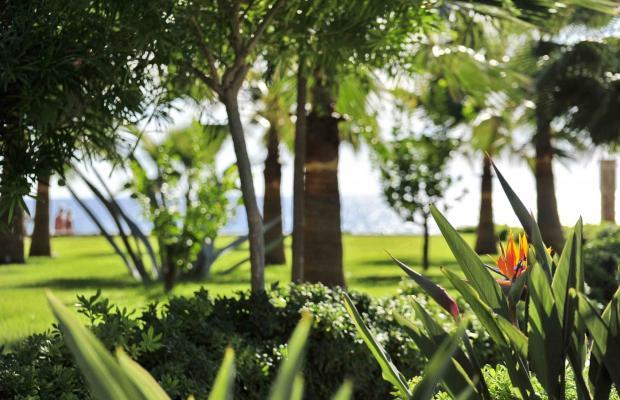 фотографии отеля Harmony Park Villa Augusto изображение №51
