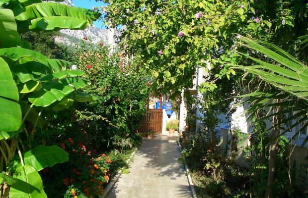 фото отеля Begonya изображение №5