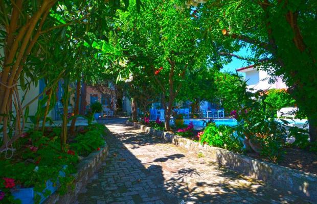 фото Jenny's House изображение №2
