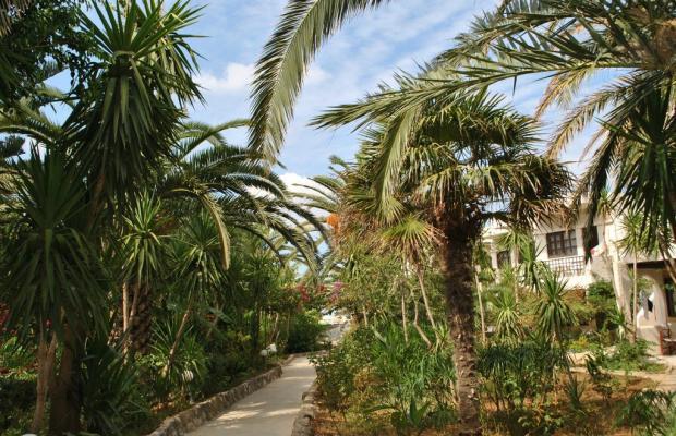 фотографии отеля Sandy Beach Hotel Georgioupolis (ex. Akti Manos) изображение №7