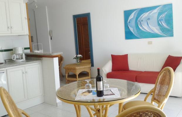 фото отеля Playa Delphin изображение №9
