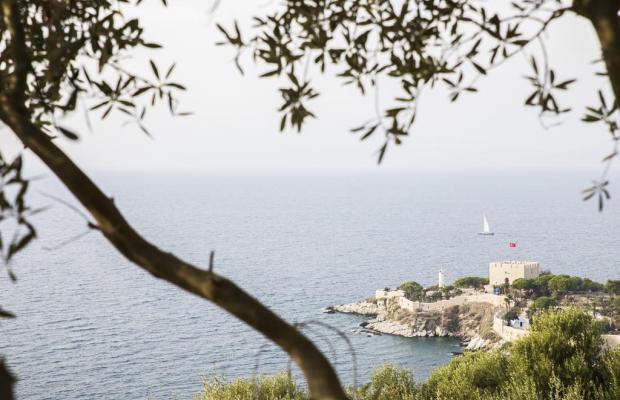 фото отеля Venti Hotel Luxury by Sheetz (ех. Palmera) изображение №21