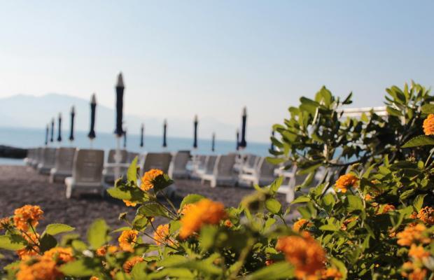 фото отеля Torre Oliva изображение №45