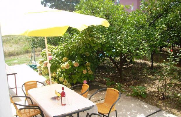 фотографии отеля Filip Apartment изображение №3