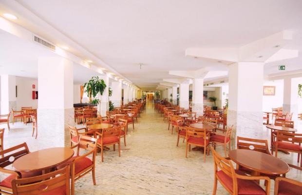 фото AzuLine Hotel Coral Beach изображение №10