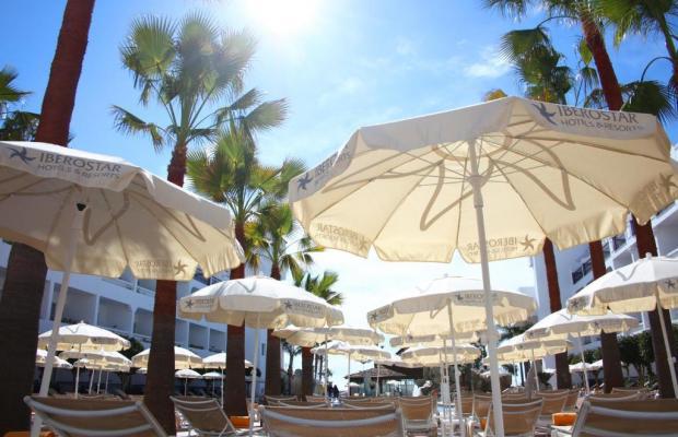 фотографии отеля Iberostar Costa del Sol (ex. Playabella Spa Gran Hotel) изображение №39