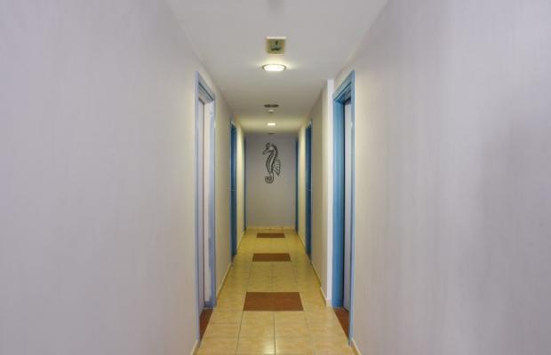 фото отеля Vassilia изображение №17