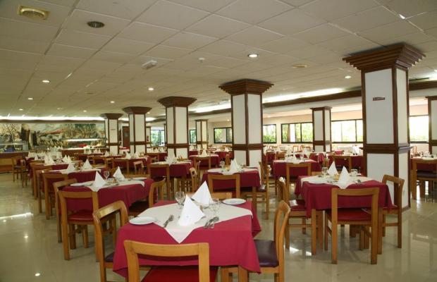 фотографии отеля Veronica изображение №7