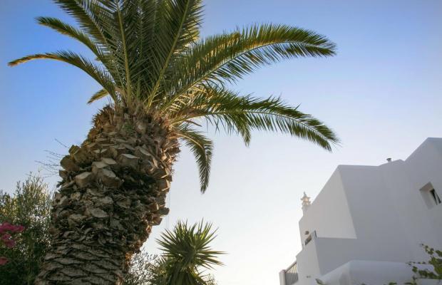 фото отеля Anna Maria изображение №5
