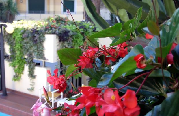 фотографии отеля Residence Coccodrillo изображение №3