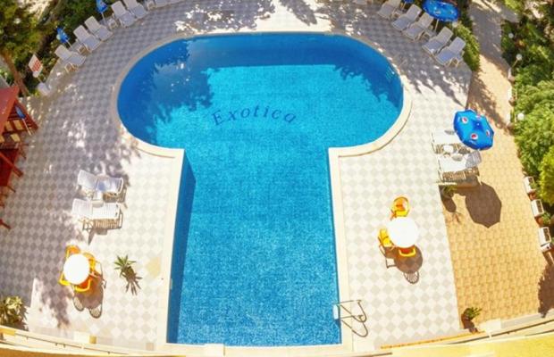 фотографии отеля Exotika (Екзотика) изображение №3