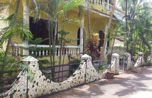 фотографии Yellow House изображение №12