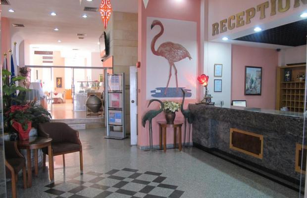фото отеля Flamingo Beach изображение №21